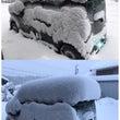 雪、降りました☆