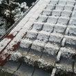 久々に積雪すごっ(゜…