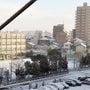 3センチの積雪