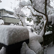#989 広島は大雪…