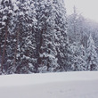 Snowing sn…