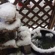 雪の日はエコクラフト…