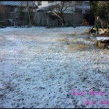 ♡雪降る日には♡