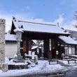 雪の妙心寺
