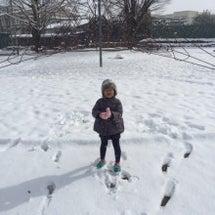 アコと雪の女王