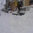 1月16日(月)雪