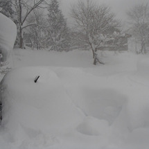 檜枝岐村の積雪や如何…