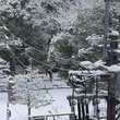 名古屋も大雪の週末