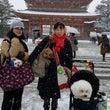 京都をお散歩カフェめ…