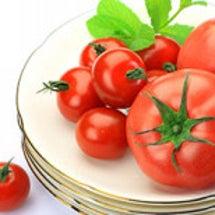 トマトの効能はスゴい…