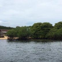 バリ島報告4