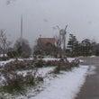 雪の日が続きました