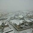 雪が。。。。
