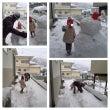 大雪ー!!