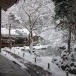 雪の蓮花寺