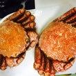 蟹と大河ドラマ