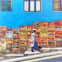 香港〜オシャレな壁画…