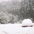 雪の日にダッフルコー…