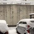 わあっ、雪!