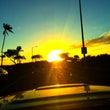 ハワイでニンテンドー…