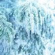 寒いですね〜