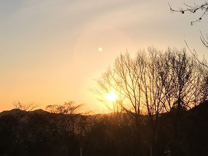 日の出1118