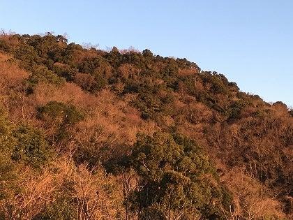 朝陽に染まる山_2