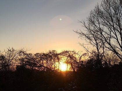 朝陽1118