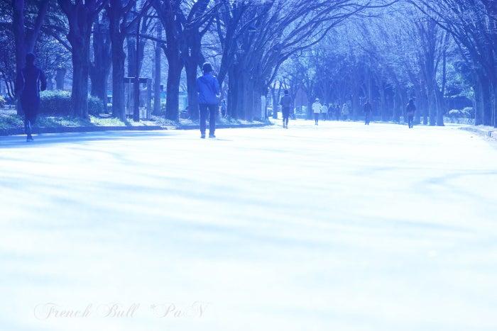 駒沢公園 フレブルパン