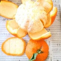 柑橘系の皮でシンクの…