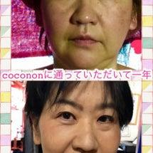 coconon滝の茶…