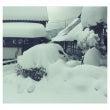 雪のピーク時