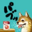 パブロフの犬⁉