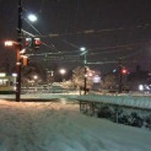 先週末の雪。