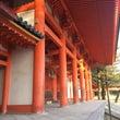 京都観光風