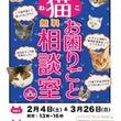 2/4(土)『猫お困…