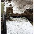 大邱!雪が降ってます…