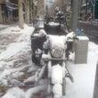 極寒ソウル旅 4日め…