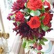 ダリアの黒蝶と赤い薔…
