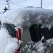 今季一番の雪!