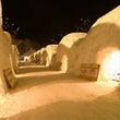冬のイベントいわて雪…