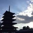 梅の蕾ふくらむ法隆寺