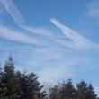 Blue sky♪