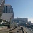 横浜⑥ 昼飯編