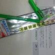 色鉛筆の蛍光バージョ…
