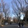 駒沢公園で会う会う