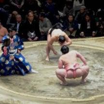 「大相撲初場所千秋楽…