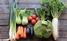 農マル園芸吉備路農園 野菜セット