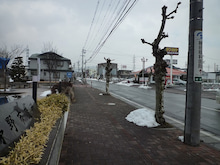 茅野市役所の向かいにもテンホウあります