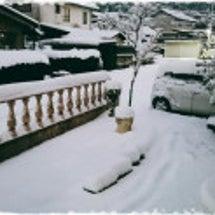 毎週・・・雪